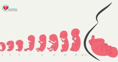Anne Karnında Bebeğin Gelişimi Nasıldır?